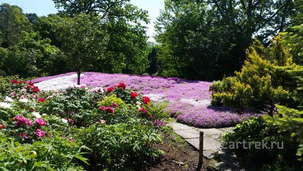 Экскурсии в Японском саду проводятся по выходным дням