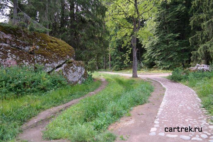 Дорожки по парку