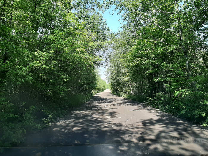За километр до шлагбаума заказника, дорога переходит в грунтовку