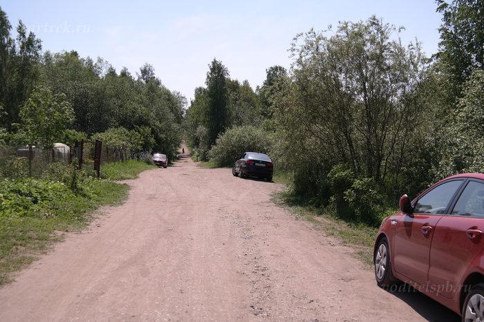 Сестрорецкое болото на машине