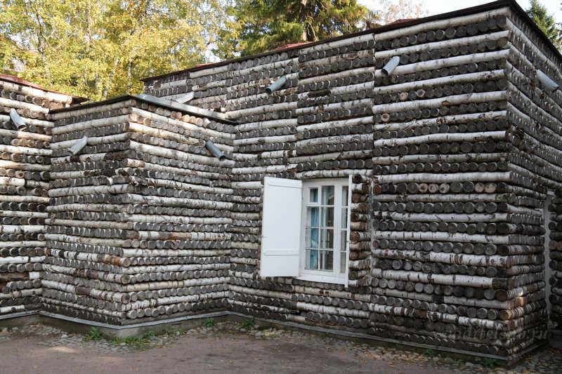 Березовый дом